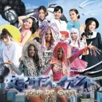 TOYOMARU MUSIC ノーマルリーチ(女子ザジャイアント)