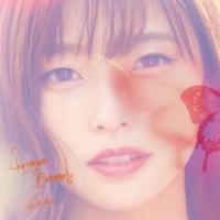 立花理香 Returner Butterfly (Instrumental)