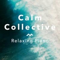 Calm Collective Love's Echo, Pt. 4