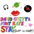 David Guetta Stay (Don't Go Away) [feat. Raye]