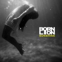 Born Lion Sunshine