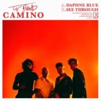 The Band CAMINO Daphne Blue / See Through