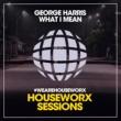 George Harris What I Mean