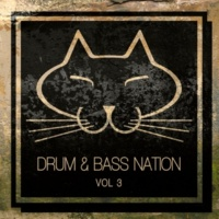 Various Artists Drum & Bass Nation, Vol. 3