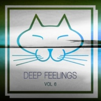 Various Artists Deep Feelings, Vol. 6