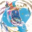 VARIOUS ARTISTS MAHARAJA NIGHT HI-NRG REVOLUTION VOL.11