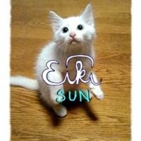 EIKI SUN