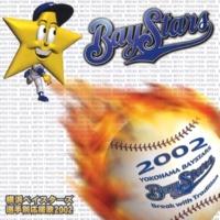 横浜ベイスターズ 横浜ベイスターズ選手別応援歌2002