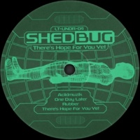 Shedbug There's Hope for You Yet