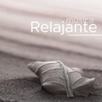 Musica para Meditar & Musica Para Meditacion Profunda Música Relajante - Sonidos de la Naturaleza