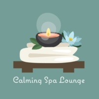 New Age Calming Spa Lounge