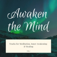 Serene Ambient Stress Relieving Divine Healing Meditation Music Awaken The Mind - Tracks For Meditation, Inner Awakening & Healing, Vol.1