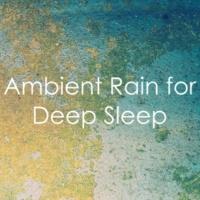 Rain Sound Studio, Restless Baby Music, Relaxing Music Therapy 17 Relaxing Ambient Rain Sounds