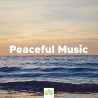 Beauty Tyree & Everything's Fine Peaceful Music