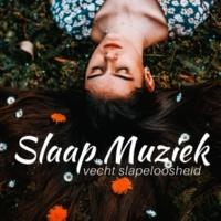 ZwangRustige Records Slaap Muziek: muziek voor de slaap, vecht slapeloosheid, vind rust en ontspanning