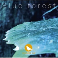kisekilay Blue forest