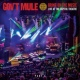 Gov't Mule The Man I Want To Be (Live)
