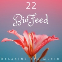 BioFeed BioFeed 22: Relaxing Spa Music, Background Music for Wellness Center, Health and Wellbeing