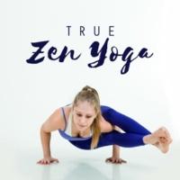Meditation Awareness True Zen Yoga