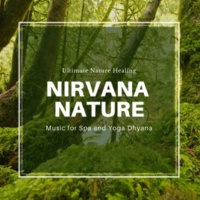 Ambient 11 & Serenity Calls & Mystical Guide Nirvana Nature - Ultimate Nature Healing Music For Spa And Yoga Dhyana
