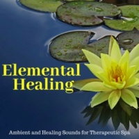 Yogsutra Relaxation Co & Ambient 11 & Serenity Calls & Liquid Ambiance & Spiritual Sound Clubb & Mystical Guide & Sanct Devotional Club & Srenity Calls Elemental Healing - Ambient And Healing Sounds For Therapeutic Spa