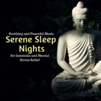 Yogsutra Relaxation Co & Ambient 11 & Serenity Calls & Liquid Ambiance & Mystical Guide & Sanct Devotional Club Serene Sleep Nights - Soothing And Peaceful Music For Insomnia And Mental Stress Relief