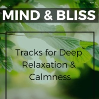 Harmonious and Peaceful Mantra & Cosmic Meditation and Soul Awakening Project & Divine Chakras and Aura Cleansing Production & Healing Divine and Relaxing Music & Relaxing and Mindfulness Music Mind & Bliss - Tracks For Deep Relaxation & Calmness, Vol.1