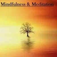 Mindfullness Meditation World, Mindfulness Meditation Music Spa Maestro, Kundalini: Yoga, Meditation, Relaxation 21 Mindfulness and Meditation Rain Sounds