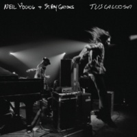 Neil Young & Stray Gators Tuscaloosa (Live)