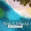 Café Ibiza Chillout Lounge