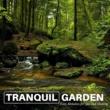 Ambient 11 & Serenity Calls & Liquid Ambiance & Spiritual Sound Clubb & Mystical Guide & Sanct Devotional Club