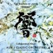 AUN J クラシック・オーケストラ ビューティフル・ネーム feat.タケカワユキヒデ