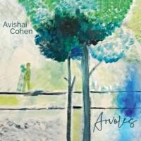 Avishai Cohen Gesture #2