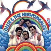 オリー&ナイチンゲールズ Ollie & The Nightingales