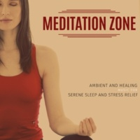 Yogsutra Relaxation Co & Ambient 11 & Serenity Calls & Liquid Ambiance & Mystical Guide & Sanct Devotional Club Meditation Zone - Ambient And Healing Music For Serene Sleep And Stress Relief