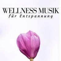 Beruhigende Musik Akademie Wellness Musik für Entspannung, Meditation mit Naturgeräusche