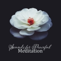 Chinese Relaxation and Meditation Sounds for Peaceful Meditation