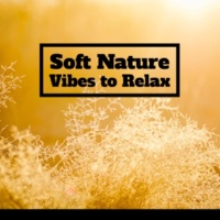 Nature Sound Series Soft Nature Vibes to Relax