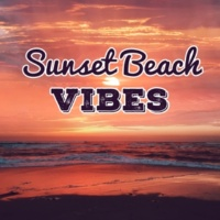 Chill Out Beach Party Ibiza Sunset Beach Vibes