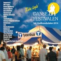 ヴァリアス・アーティスト Dansefestivalen Sel, Gudbrandsdalen 2014 - Råte løyle'