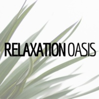 Spa Sensations Relaxation Oasis - 24 Songs
