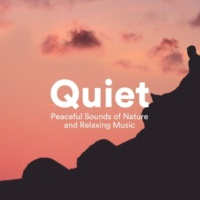 Nature Sounds & 2 Pianos Quiet - Peaceful Sounds of Nature and Relaxing Music
