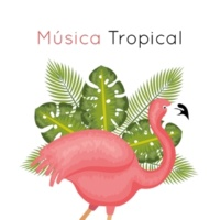 Chillout Lounge Música Tropical