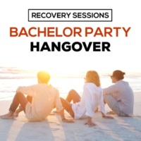 Various Artists Recovery Sessions: Bachelor Partyhangover