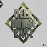 Jehovah's Witnesses & A&1 & Blood Groove & Kikis & Andrey Potyomkin & Rishi K. & Shinobi & Sergey Silvertone & Anturage & Alex Pich & Karmine Rosciano & Fumu & Bring Bliss & Stendahl & FX2 & FYEO & Vi Deep House Case, Vol. 9