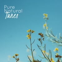 Ocean Sounds Collection Pure Natural Tunes