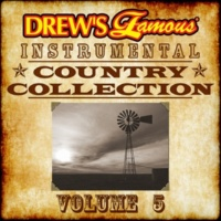 The Hit Crew Drew's Famous Instrumental Country Collection, Vol. 5