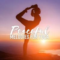 Meditation Zen Master Peaceful Melodies for Yoga
