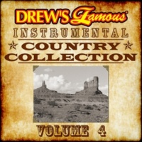 The Hit Crew Drew's Famous Instrumental Country Collection, Vol. 4