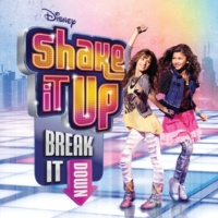 ヴァリアス・アーティスト Shake It Up: Break It Down